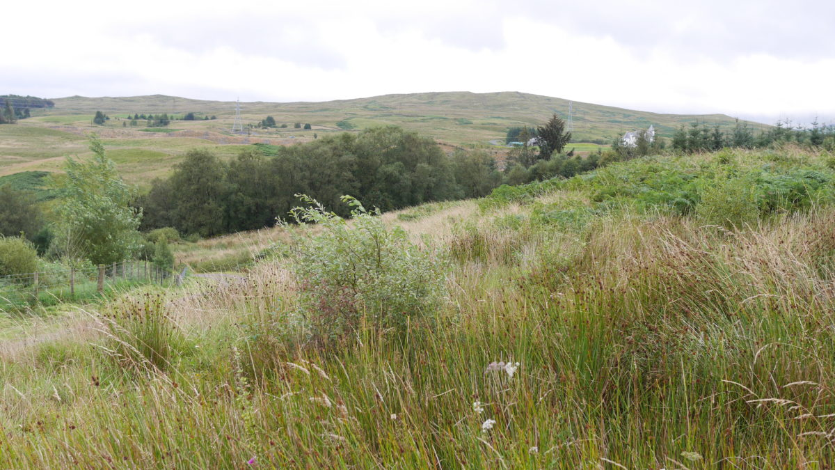 Plot 1, Marbrack, Carsphairn, Castle Douglas, DG7 3TE - Braidwoods Solicitors & Estate Agents