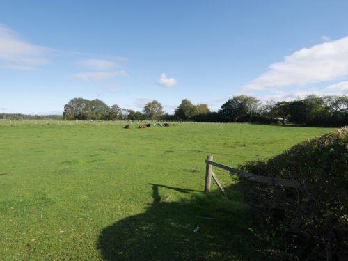 Land (1.85 acres), Annan Road, Dumfries, DG1 3JX - Braidwoods Solicitors & Estate Agents